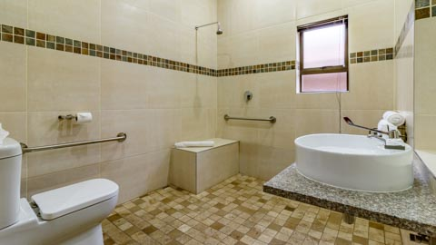 Wheelchair Friendly Double Room